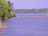 View from the Bungalow | Serenity Lake Front Villa Bolgoda | Sri Lanka Colombo