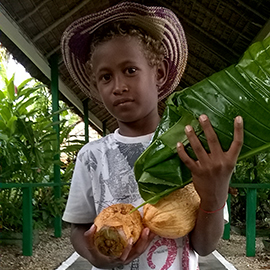 Boy with coconuts