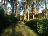 Surrounded by Nature - Hotel Fazenda Caco de Cuia - Itabirito