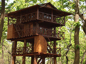 Jungle Tower