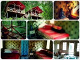 Lodging | Tathagata Farm | Darjeeling, India