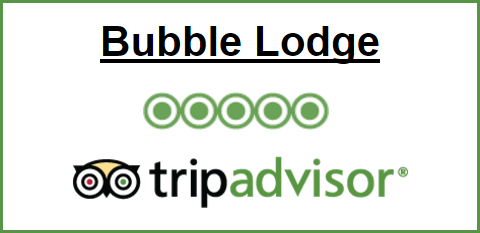 Bubble Lodge - TripAdvisor Badge