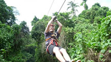 Jungle Zipline