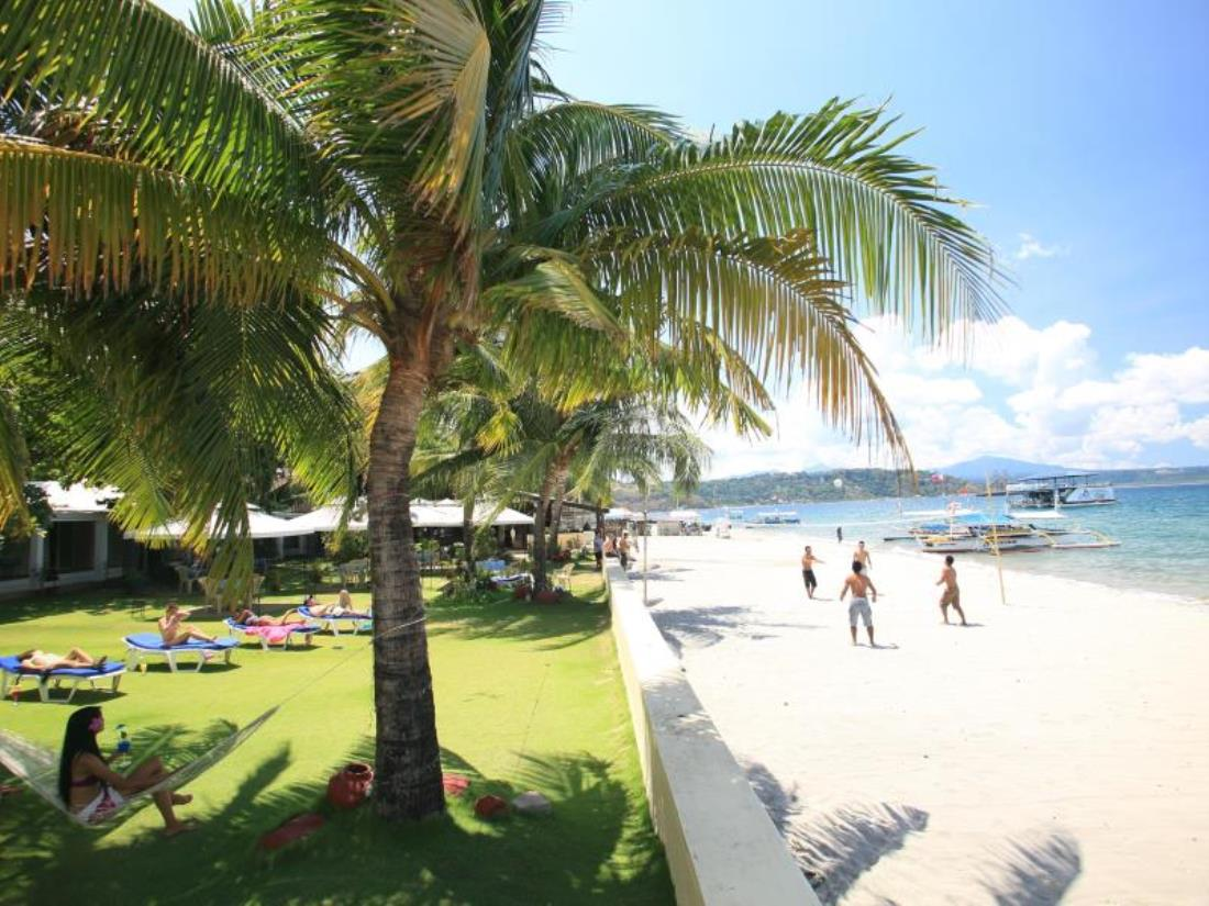 Wild Orchid Beach Resort Inc Website Olongapo Hotel