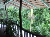 Balcony View - Lehns Hotel and Apartments - Koror, Palau