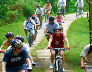 Cycling - Tours and Activities, Puri Darma Agung, Ubud, Bali - Indonesia