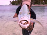 Aitutaki Sports & Fly Fishing Lodge | Aitutaki, Cook Islands