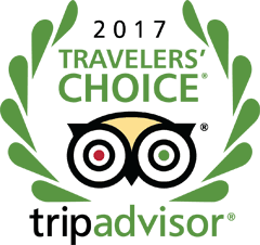 TripAdvisor Travelers' Choice 2017 Award