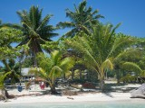 Luua Beach I Amoa Resort Savaii