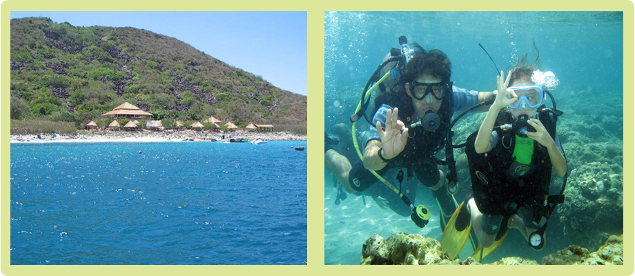 Island tour & Diving