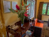 Local Flowers | Georgina's Cottage Beach House | Seychelles