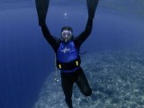 Diving Experience - Ms. Pinetree's Hostel - Palau