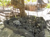 Shrine to Ancestors - Santa Faustina Homestay - Kiribati