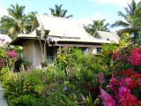Small fale garden view