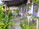 small fale patio (front garden)