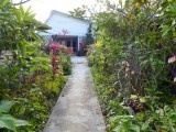 side walk from small fale to hotel buiding entrance (from back garden)