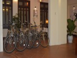 Free bicycle | Orchids Homestay