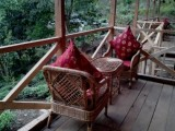 Seating | Tathagata Farm | Darjeeling, India