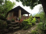 Independent Hut | Tathagata Farm | Darjeeling, India