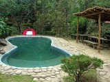 Pool | Tathagata Farm | Darjeeling, India