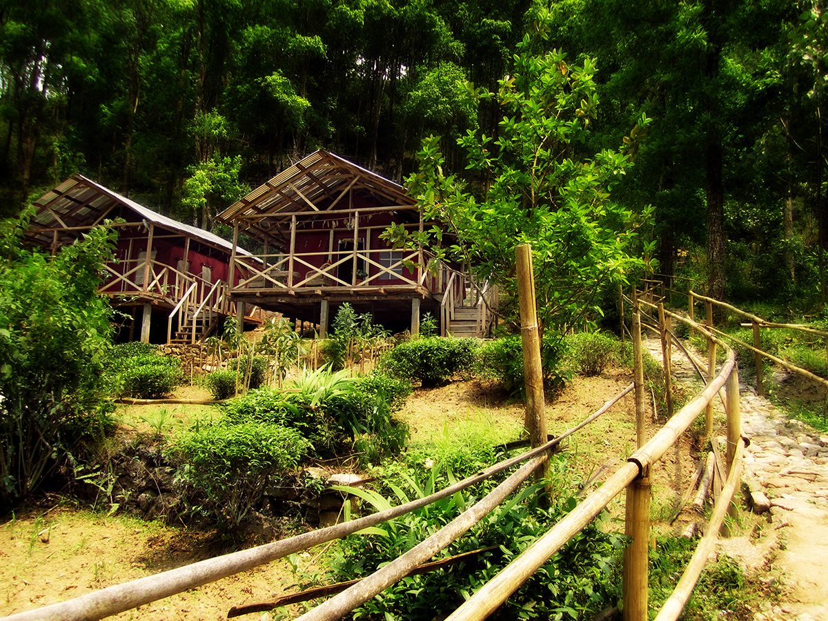 Farmstays in India that will make you ditch the city life -
