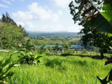 Garden View | Les Cottages de Bellevue Ecolodge | Port Vila, Vanuatu