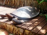 Turtle Carving | Les Cottages de Bellevue Ecolodge | Port Vila, Vanuatu