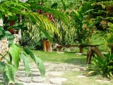 Benches in the Garden | Les Cottages de Bellevue Ecolodge | Port Vila, Vanuatu