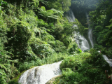 High Mele Cascades | Les Cottages de Bellevue | Vanuatu