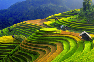 Sapa Trekking 3 days 4 nights by train