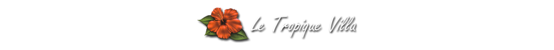 Tropic Villa Group - Logo Full