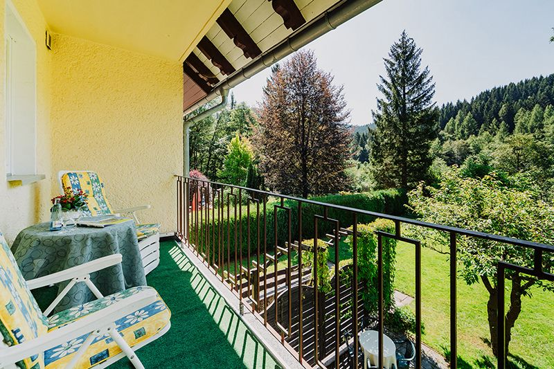 Balcony wit a beautiful panoramic view of the valley & the mountain town Wildemann - Bergpension Haus Vogelsang