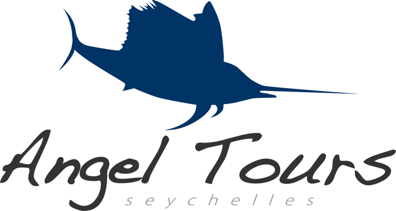 Angel tours logo