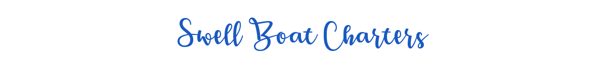 Swell Boat Charters